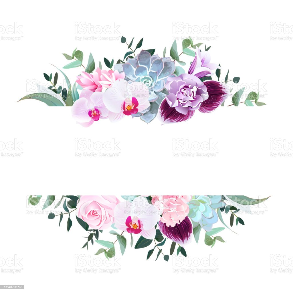Paarse orchidee, roze roos, Hortensia, campanula, anjer, succul​​vectorkunst illustratie