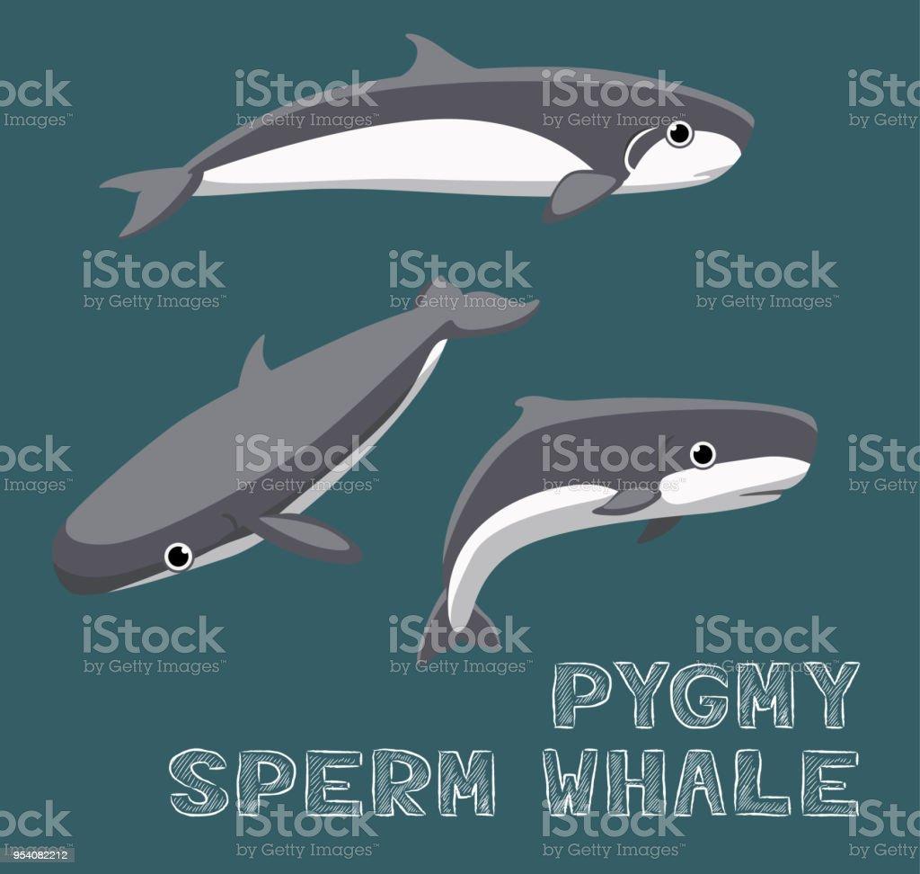Pygmy Sperm Whale Cartoon Vector Illustration Stock Vector Art ...