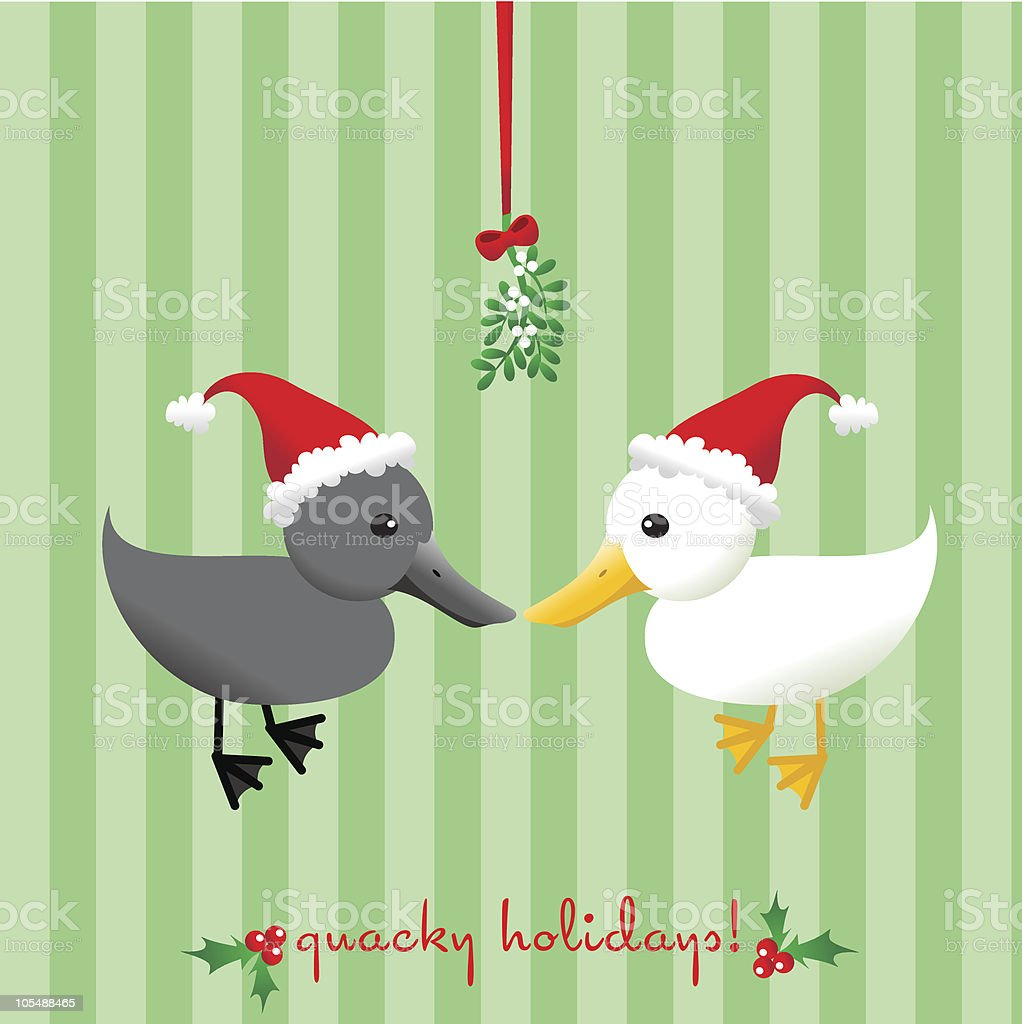 Quacky Holidays! royalty-free quacky holidays stock vector art & more images of animal