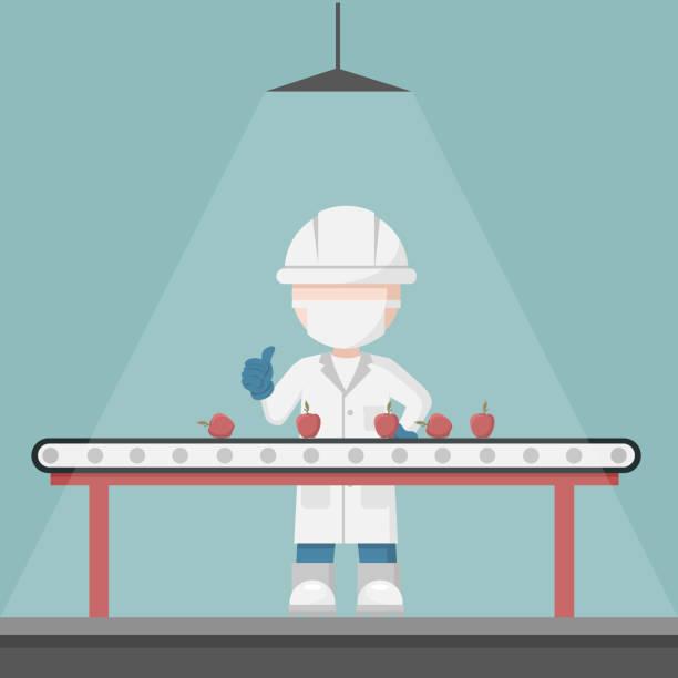 qualitätskontrolle supervisor in einer obstauswahl produktionslinie. lebensmittelförderband - nahrungsmittelindustrie stock-grafiken, -clipart, -cartoons und -symbole