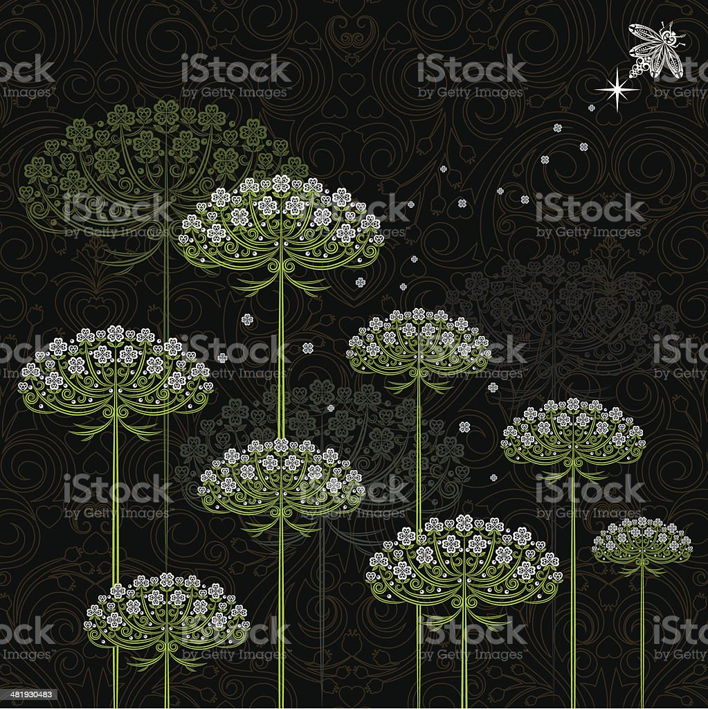 Queen Anne's Lace and Firefly vector art illustration