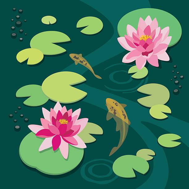 ruhige pond  - seerosenteich stock-grafiken, -clipart, -cartoons und -symbole
