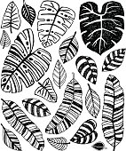 Quirky Tropical Jungle Leaves
