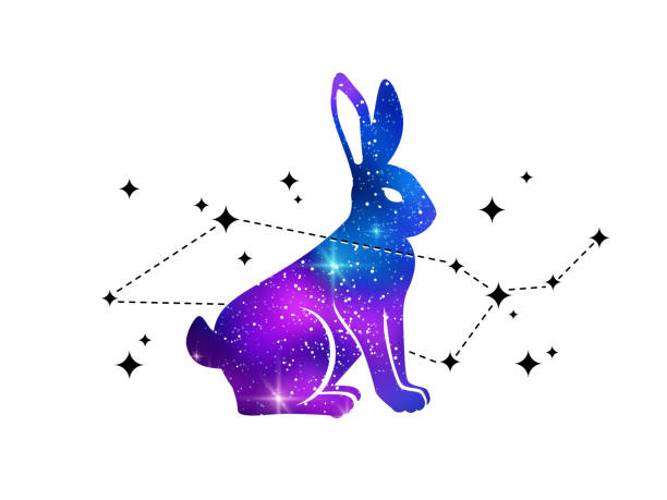 Lapin et la constellation de la baleine - Illustration vectorielle
