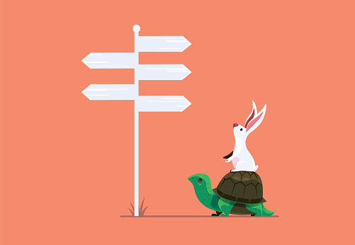 rabbit and tortoise finding direction