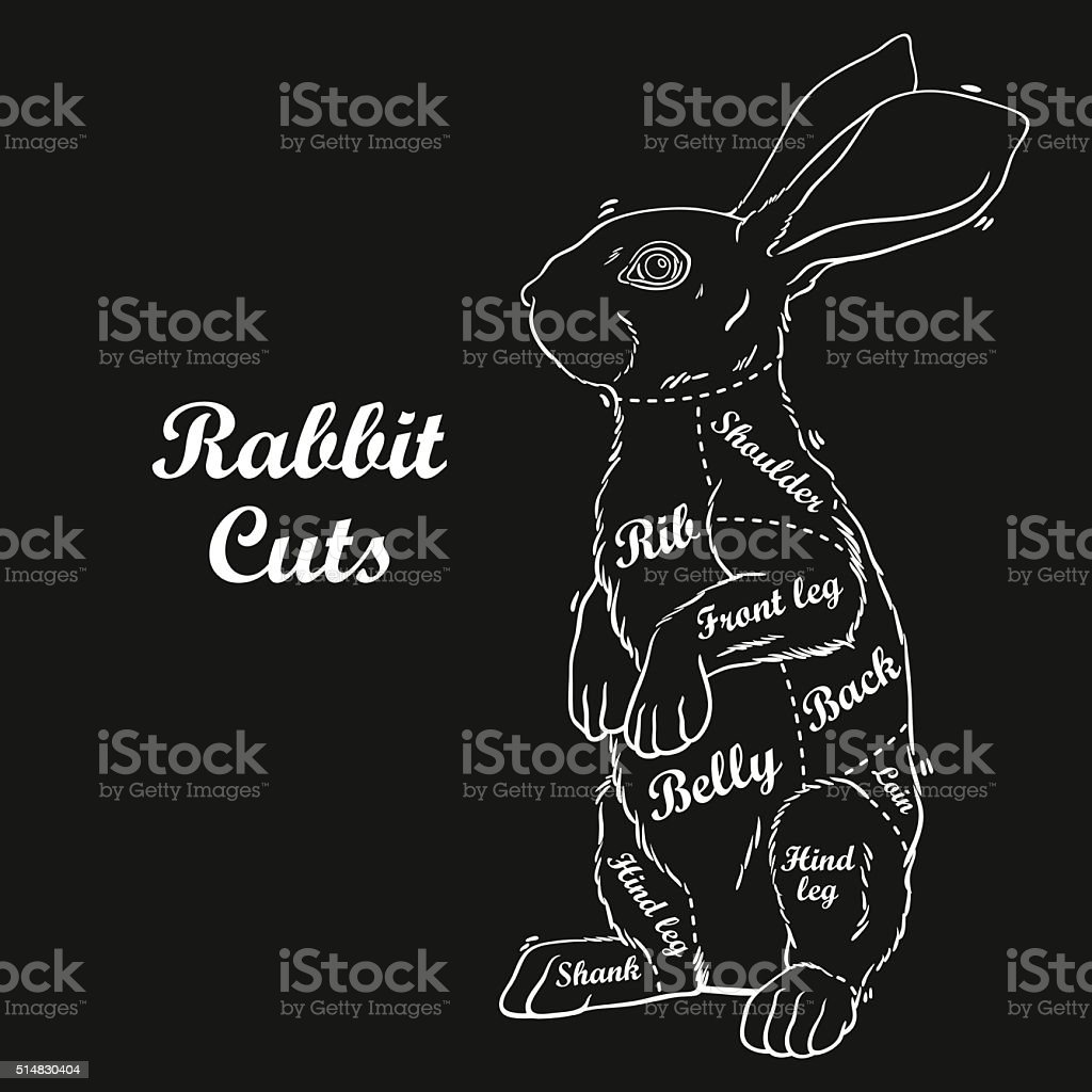 Ilustración de Conejo Cortes Diagrama De Carnicero y más banco de ...