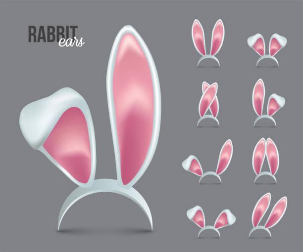 rabbit ears realistic 3d vector illustrations set - rabbit stock illustrations