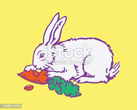 istock Rabbit Eating a Carrot 1328214734