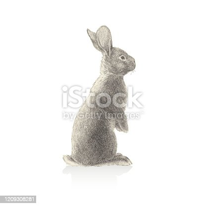 istock Rabbit Illustration In Stipple Effect 1209308281