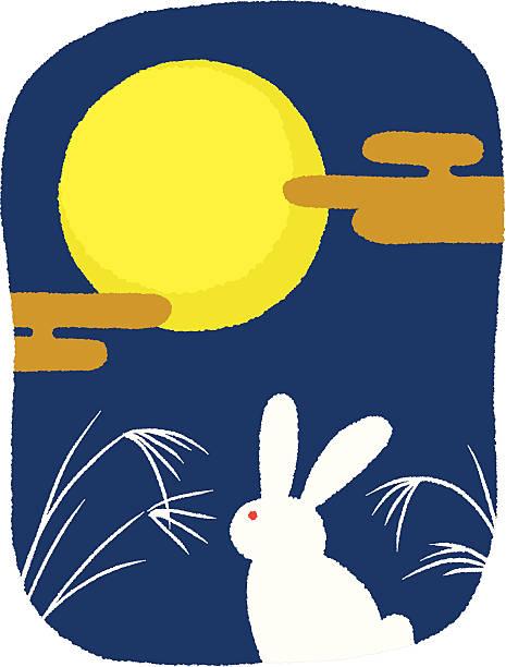 illustrazioni stock, clip art, cartoni animati e icone di tendenza di coniglio di vista la luna - miscanthus sinensis