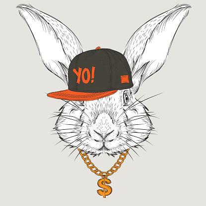 Rabbit portrait in hip-hop hat. Vector illustration.