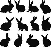 vector file of rabbit silhouettes
