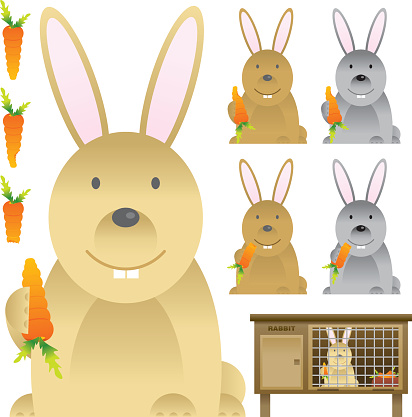 Rabbit with Carrot & Hutch