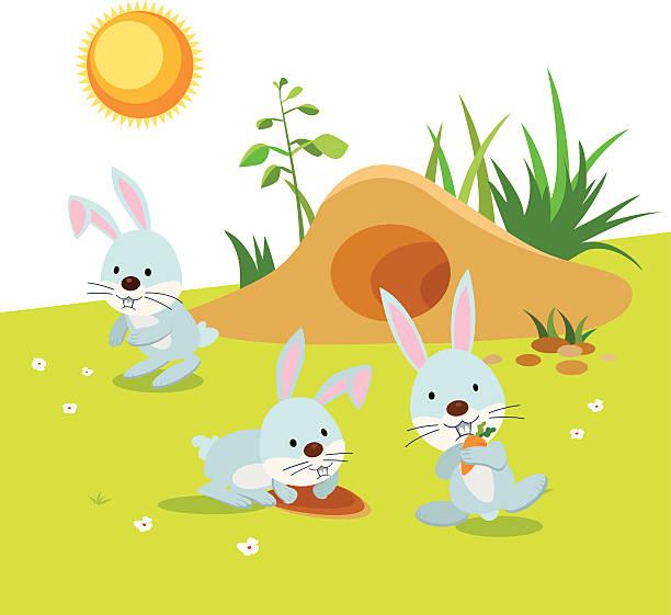 kaninchen-aktivitäten - kaninchenbau stock-grafiken, -clipart, -cartoons und -symbole