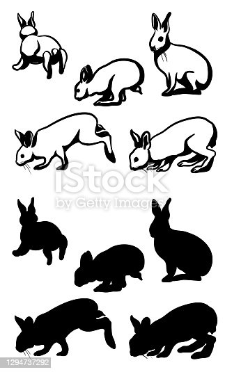 Rabbits In Action Silhouette