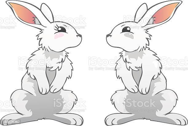 Rabbits vector id153228362?b=1&k=6&m=153228362&s=612x612&h=s2pgpyznf by4tskjswmrdkekjaoq0jscudrbusi xe=