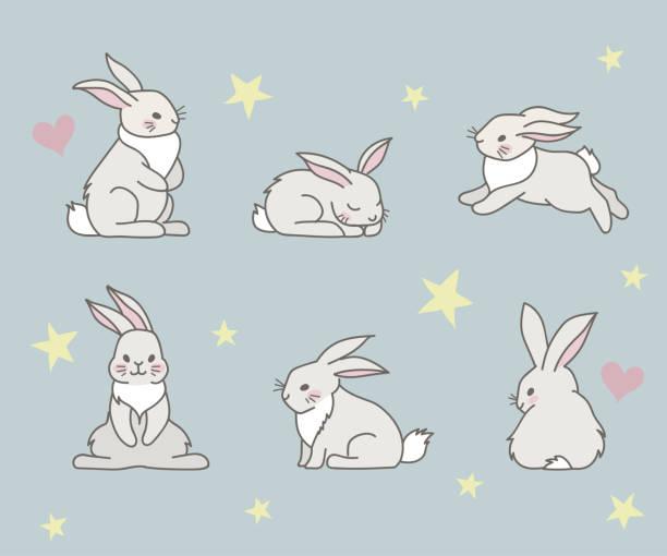 rabbits - rabbit stock illustrations