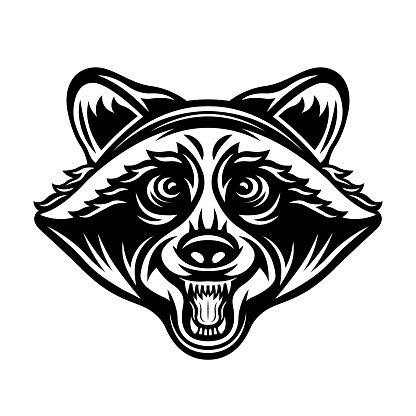 Raccoon head vector illustration in monochrome vintage style isolated on white background