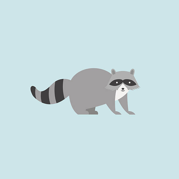raccoon icon - raccoon stock illustrations