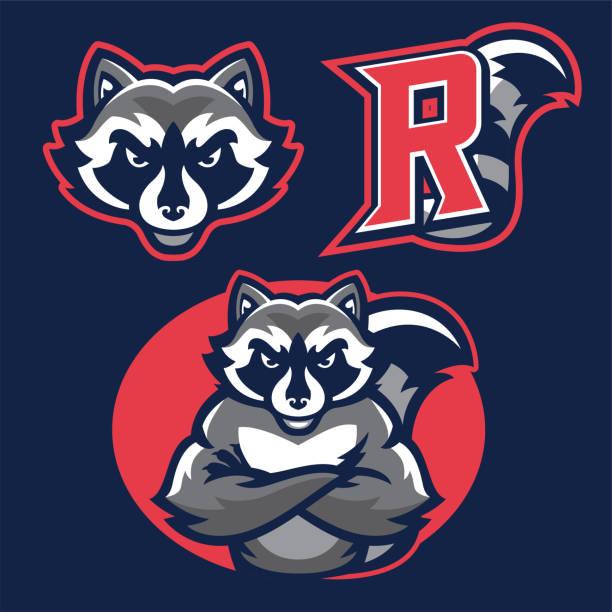 raccoon in sport mascot vector of raccoon in sport mascot raccoon stock illustrations