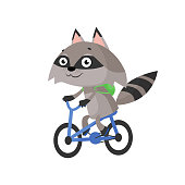 Raccoon riding bicycle. Carefree, character, cartoon. Can be used for topics like leisure, active lifestyle, animal