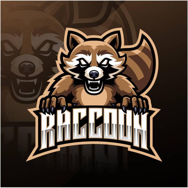 Raccoon sport mascot logo design Illustration of Raccoon sport mascot logo design raccoon stock illustrations