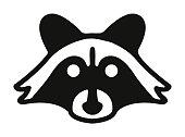 istock Raccoon 1003202428