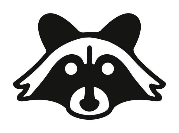 Raccoon Raccoon raccoon stock illustrations