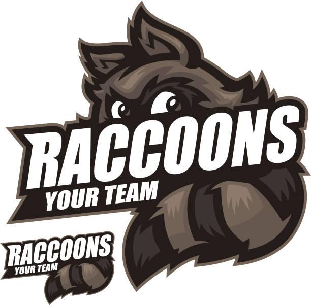 raccoons sports kit - raccoon stock illustrations