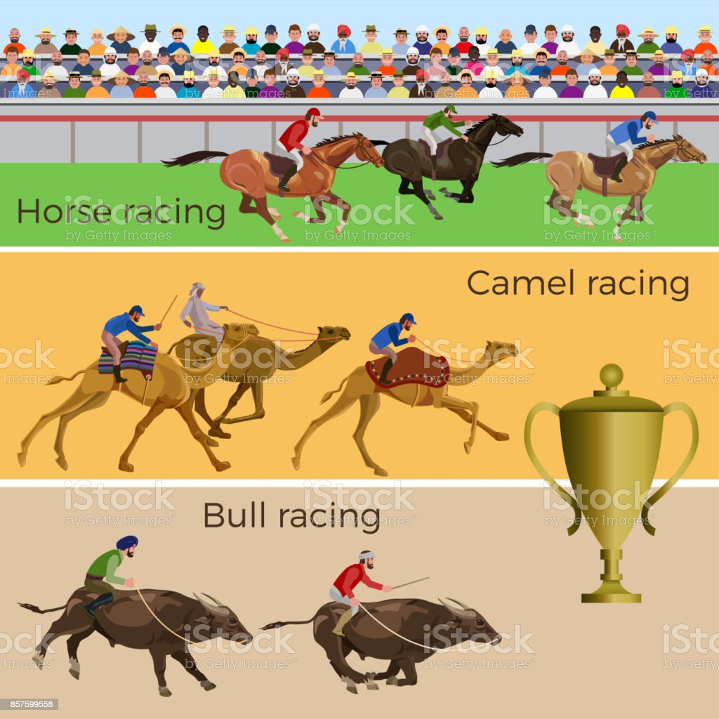 Racing horse, camel, bull vector art illustration