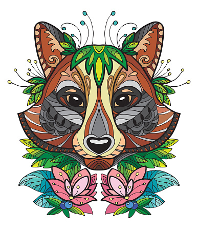 Racoon colorful vector