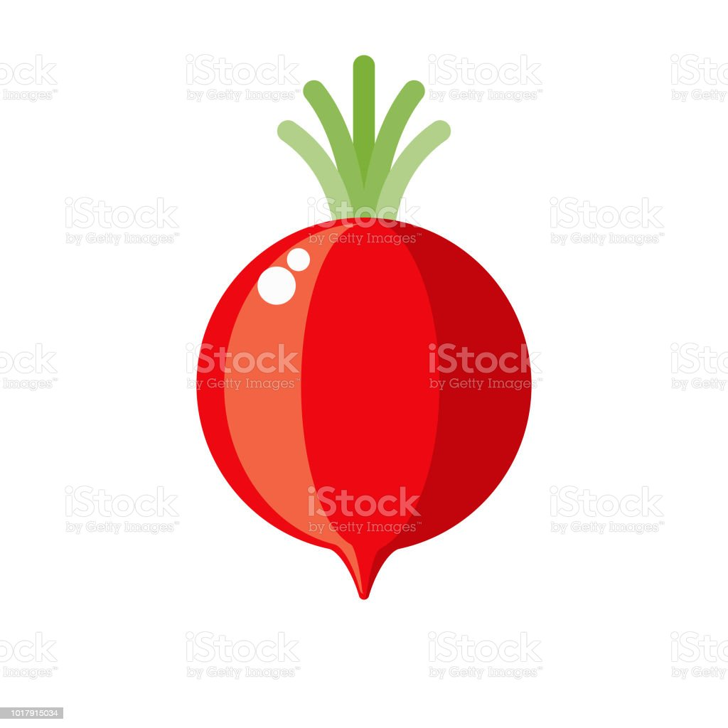 Radish Flat Design Vegetable Icon vector art illustration