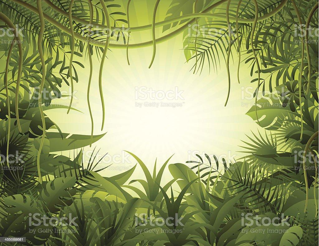Rain floresta - ilustração de arte em vetor