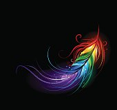 artistically painted rainbow feather on a black background.