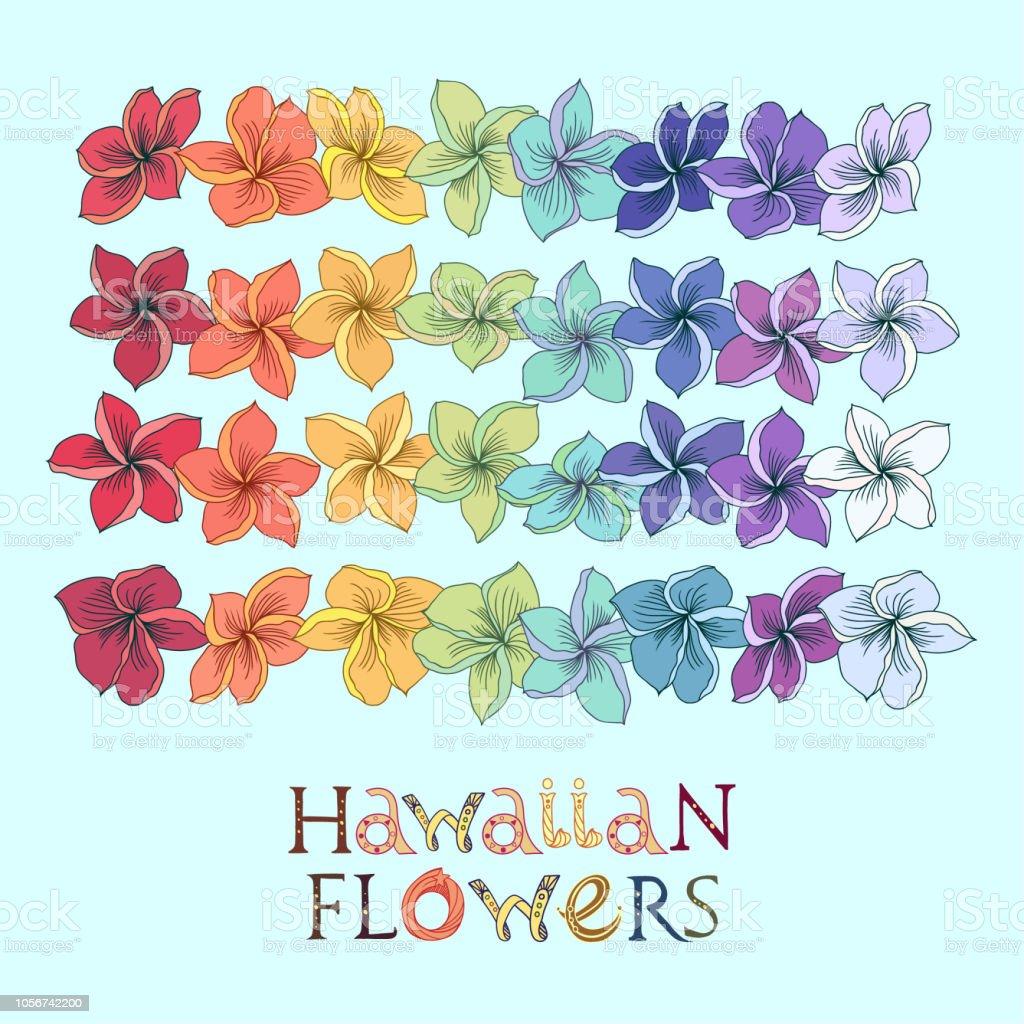 Rainbow Hawaiian Flower Lei Set Stock Vector Art More Images Of