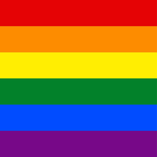 rainbow pride flag lgbt movement - same sex couples stock illustrations
