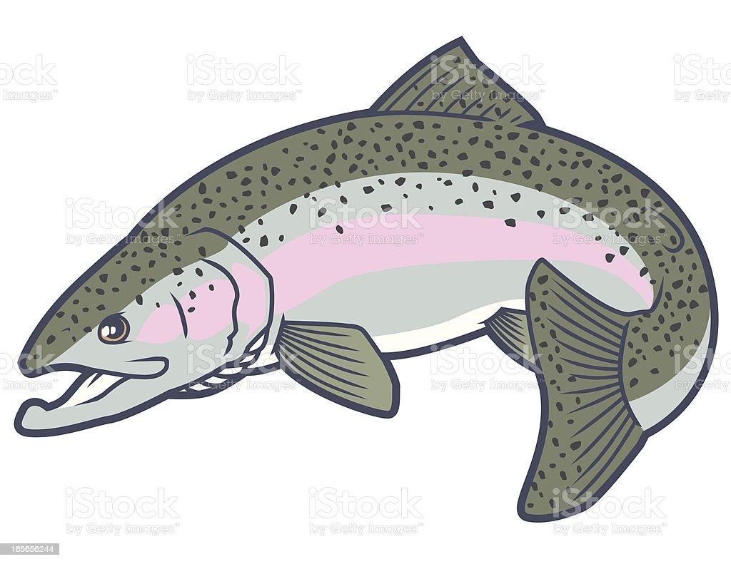 Rainbow trout vector art illustration