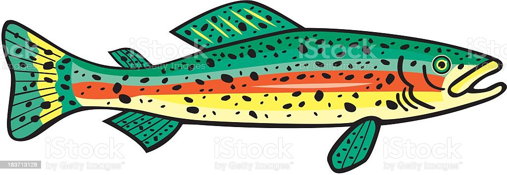 royalty free steelhead trout clip art vector images illustrations rh istockphoto com free trout fish clipart free trout fish clipart