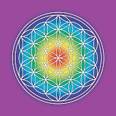 Rainbow-colored flower of life symbol. This geometrical figure, composed of multiple evenly-spaced, overlapping circles is a strong, ancient symbol and stands for various believes related to the sacred geometry and healing energies.
