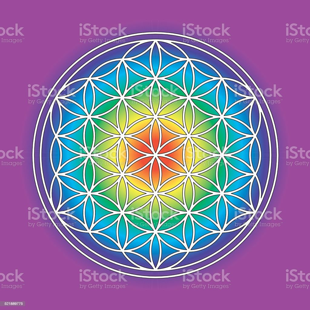 Rainbow-colored flower of life symbol vector art illustration