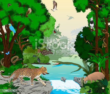 istock Rainforest river with animals vector illustration. Vector Green Tropical Forest jungle with parrots, jaguar, boa, peccary,  Capybara, osprey, harpy, monkey, deer, toucan, anaconda and butterflies. 1286217421