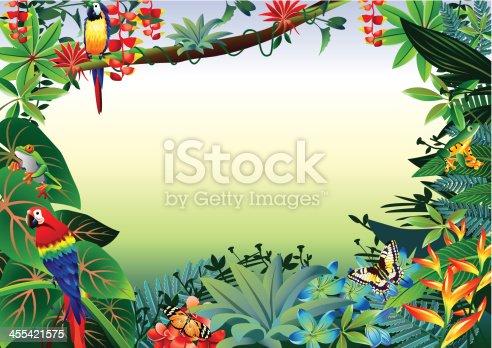 Vector illustrator of Rainforest Tropical Border.
