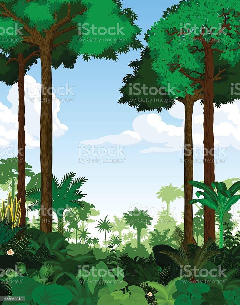 Rainforest vector illustration. Vector Green Tropical Forest jungle - ilustração de arte em vetor