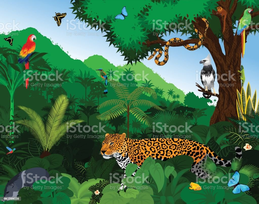Rainforest with animals vector illustration. Vector Green Tropical Forest jungle with parrots, jaguar, tapir, peccary, harpy, monkey, motmot, anaconda and butterflies. vector art illustration