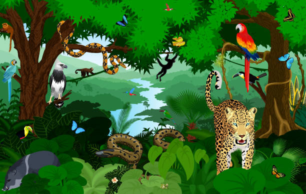 rainforest with animals vector illustration. vector green tropical forest jungle with parrots, jaguar, boa, peccary, harpy, monkey, frog, toucan, anaconda and butterflies. - javelina stock illustrations
