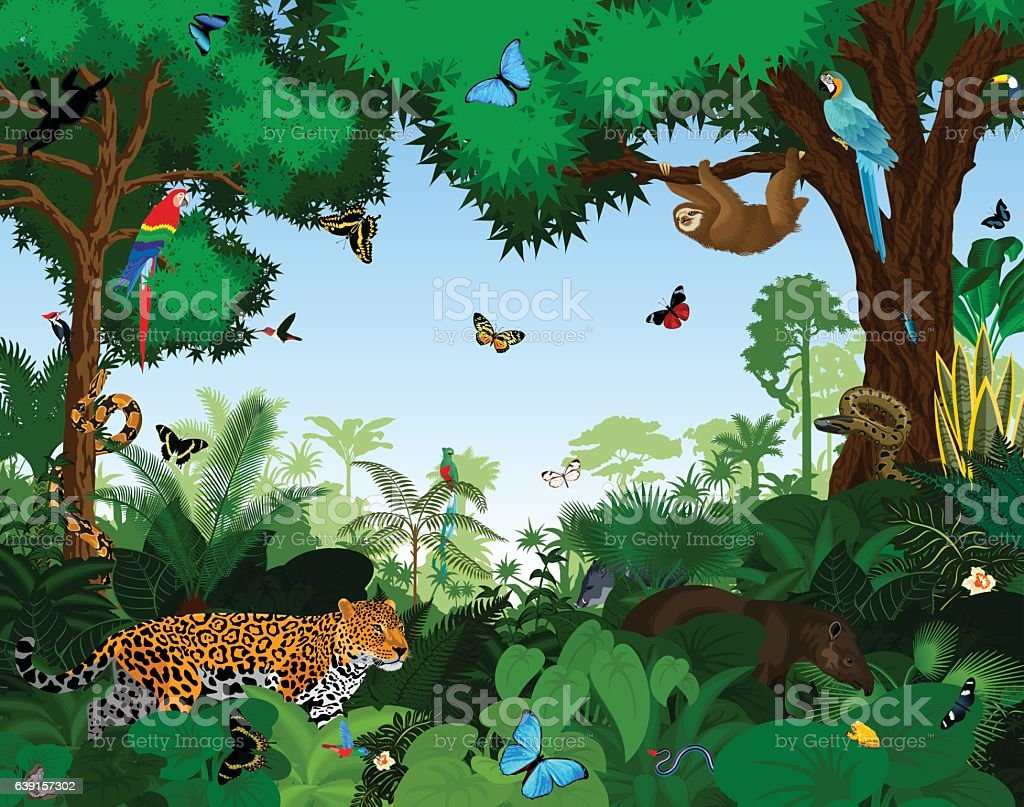 Rainforest with animals vector illustration. vector art illustration