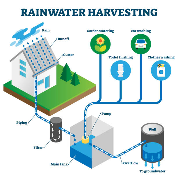Rainwater harvesting system isometric diagram vector art illustration