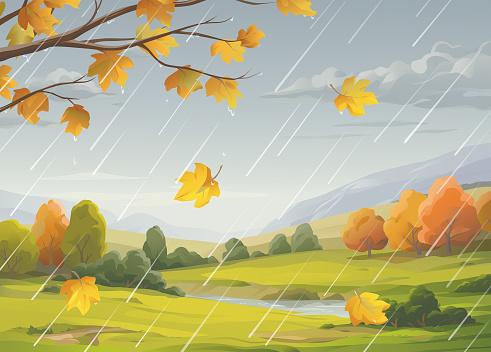 Rainy Autumn Landscape