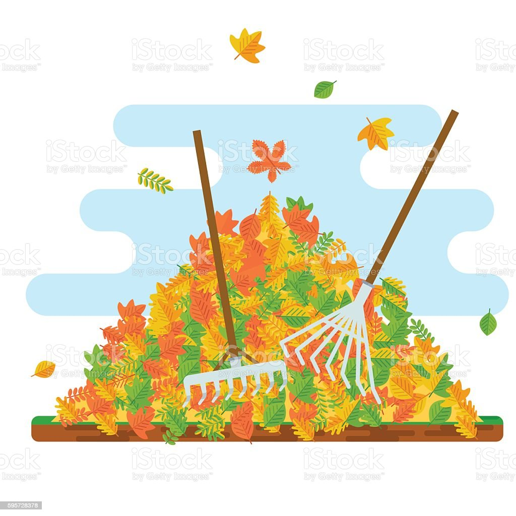 rake collecting fallen leaves vector art illustration