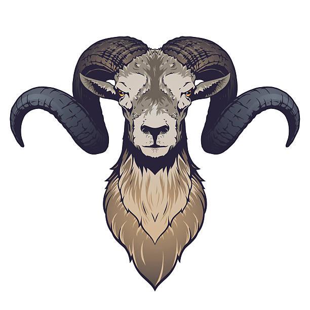 Best Ram Illustrations, Royalty-Free Vector Graphics ...